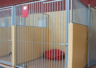 Copy-of-kennels-037-(1)